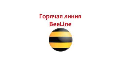 Горячая линия BeeLine